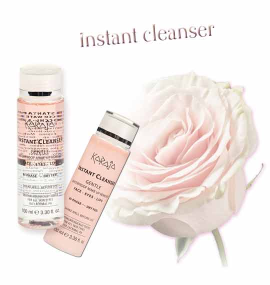 INSTANT CLEANSER